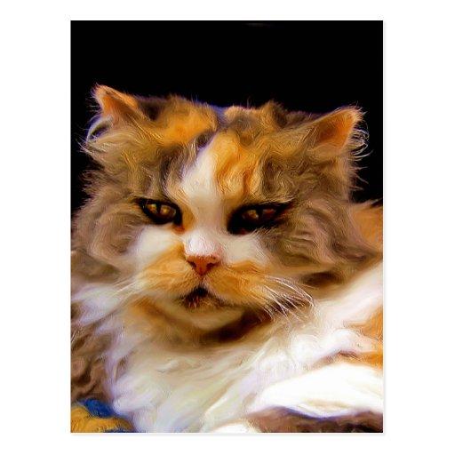 Postal del gato de calicó