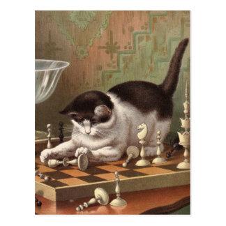 Postal del gato del ajedrez