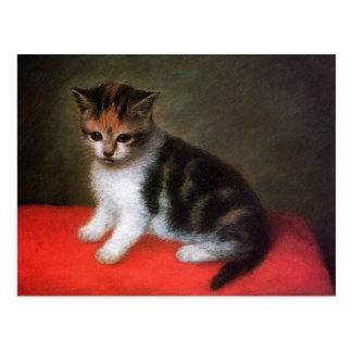 Postal del gato del gatito:  Gatito de George