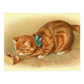 """Postal del """"gato y del ratón"""""""