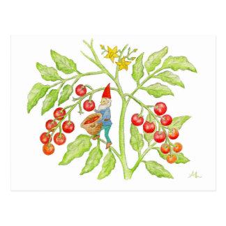 Postal del gnomo del tomate de cereza