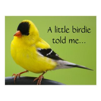 Postal del Goldfinch