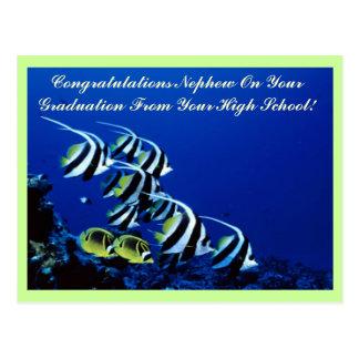 Postal del graduado del sobrino de la enhorabuena