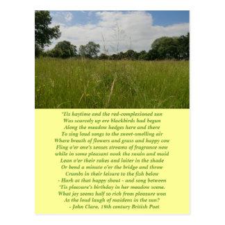 Postal del Haymaking del solsticio de verano