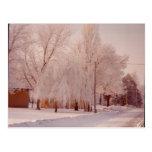 Postal del hielo del invierno