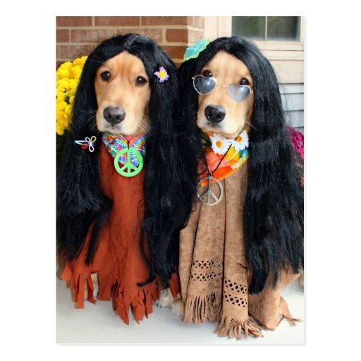 Postal del Hippie de Halloween del golden retrieve