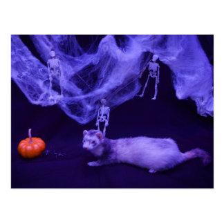 Postal del hurón de Halloween
