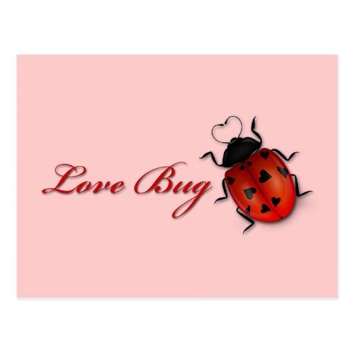 Postal del insecto del amor