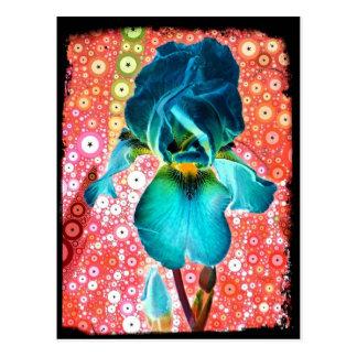 Postal del iris del arándano
