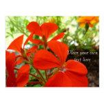 postal del jardín de flores