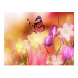 Postal del jardín de la fantasía de la mariposa