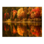 Postal del lago autumn