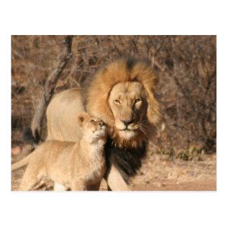 Postal del león y de Cub de león