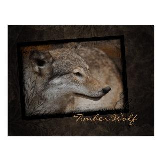 Postal del lobo de madera