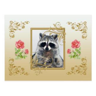 Postal del mapache