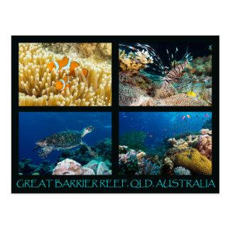 Postal del mar de coral