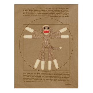 Postal del mono de Vitruvian