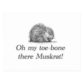 Postal del Muskrat el |