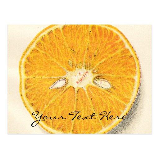Postal del naranja del vintage