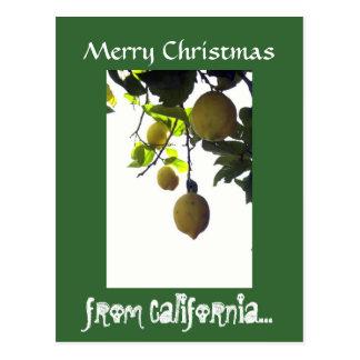 Postal del navidad de California