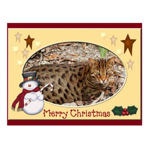 Postal del navidad del gato de Bengala