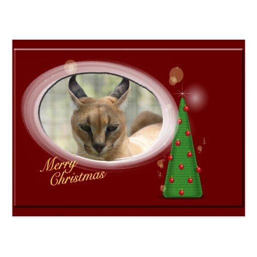 Postal del navidad del lince de Caracal
