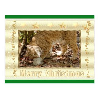 Postal del navidad del lince