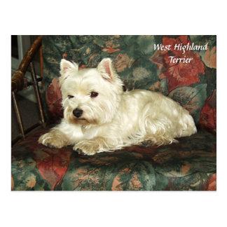 Postal del oeste de reclinación querida de Terrier