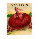 postal del paquete de la semilla de la cebolla roj