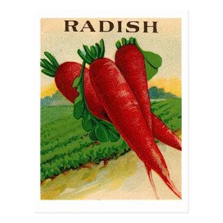 postal del paquete de la semilla del rábano rojo d