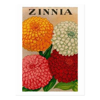 postal del paquete de la semilla del zinnia del vi