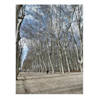 Postal del Parc de la Devesa de Girona