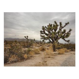 Postal del parque nacional de la yuca