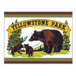 Postal del parque nacional de Yellowstone