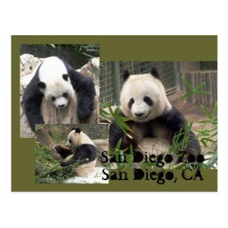 Postal del parque zoológico de San Diego