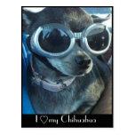 Postal del perro de la ji