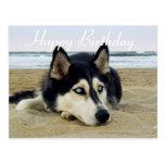 Postal del perro de perrito del husky siberiano de