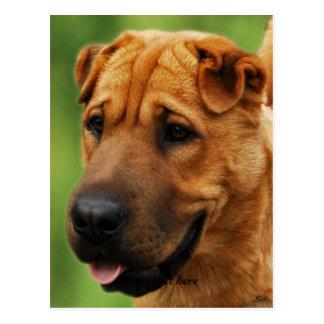 Postal del perro de Shar Pei