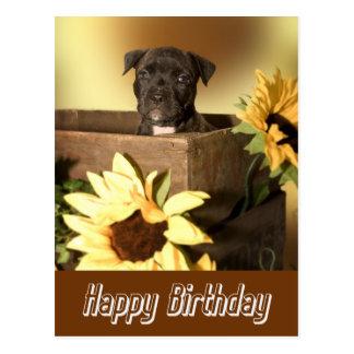 Postal del perro de Staffordshire Terrier del feli