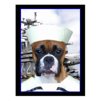 Postal del perro del boxeador del marinero de la m