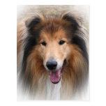 postal del perro del collie
