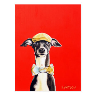 Postal del perro del galgo italiano - Harry