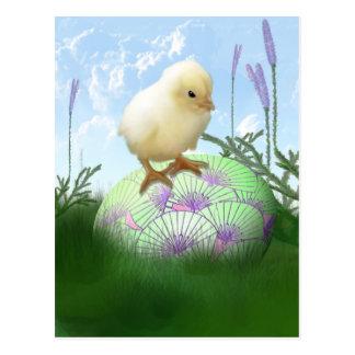 Postal del polluelo de Pascua