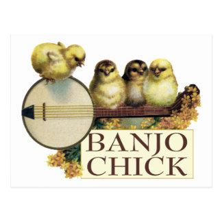 Postal del polluelo del banjo