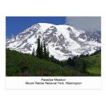 Postal del prado del paraíso del Monte Rainier
