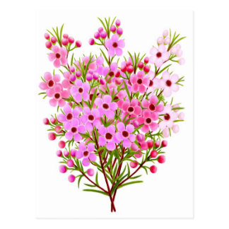 Postal del ramo de la flor de la cera
