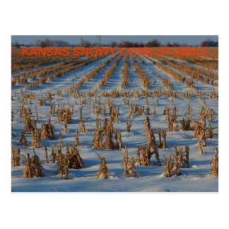 POSTAL del rastrojo del maíz de Kansas Nevado