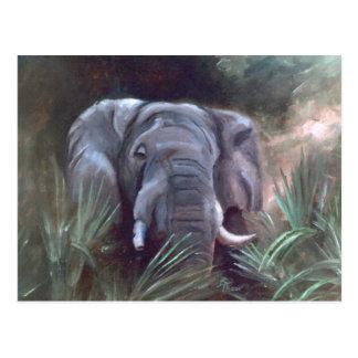 Postal del retrato del elefante