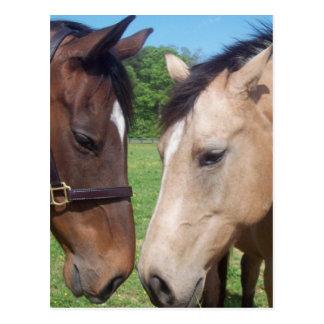 Postal del romance del caballo