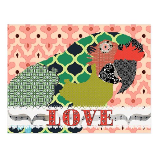 Postal del rosa del amor del Macaw de Molly